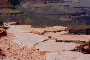 Grand Canyon Hike 045