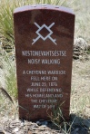 Little Bighorn, SD 002