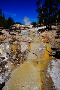 Yellowstone, WY 017