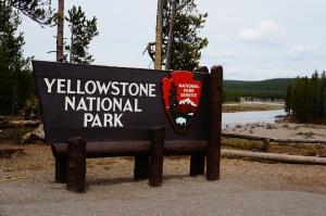 Yellowstone, WY 024