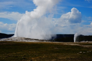Yellowstone, WY 035