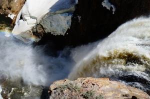Yellowstone, WY 039
