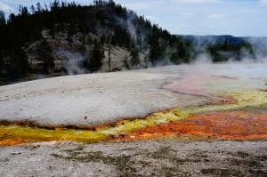 Yellowstone, WY 043